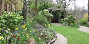 Chelsea Fringe: Three Weeks Of Glorious Gardens