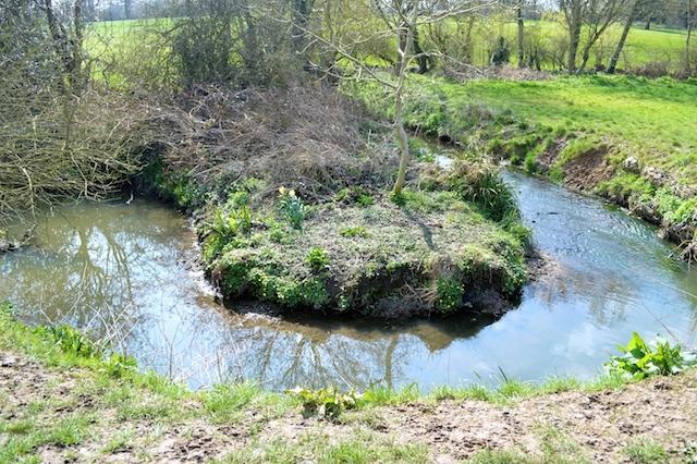 Weekend Walks: The Dollis Brook Near Barnet