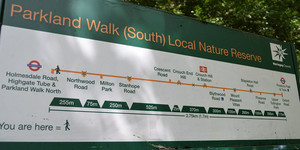 Weekend Walk: Haringey's Parkland Walk