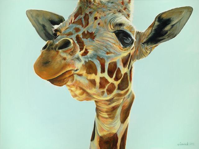 Week Of Wildlife Art Coming To Mall Galleries