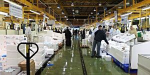 A 4am Shopping Trip To Billingsgate Market