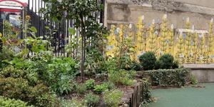 London's Little Gardens: Elliott's Row