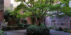 London's Little Gardens: St Vedast Alias Foster