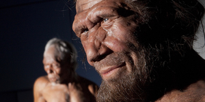 6 Things We Learned At The New Human Evolution Gallery
