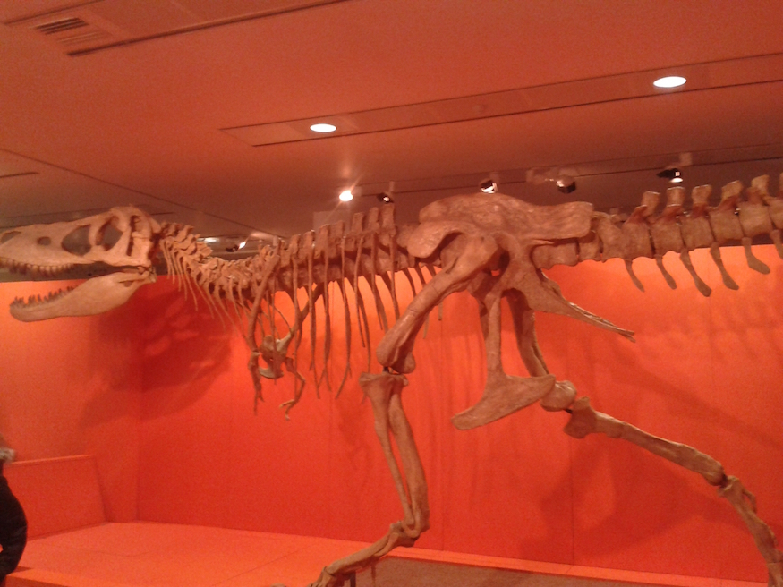 Dippy's Got Competition At New Dinosaur Exhibition