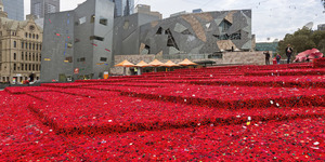 300,000 Poppies Coming To Chelsea Flower Show