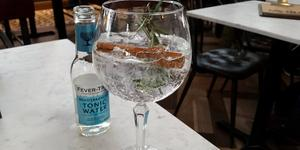 Ginder Finds Your Perfect G&T Match