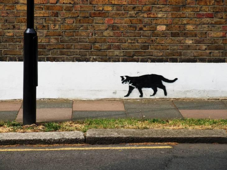 London News Roundup: £5k Reward For Capture Of Croydon Cat Killer