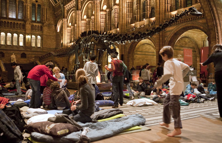 Dino Snores At The Natural History Museum