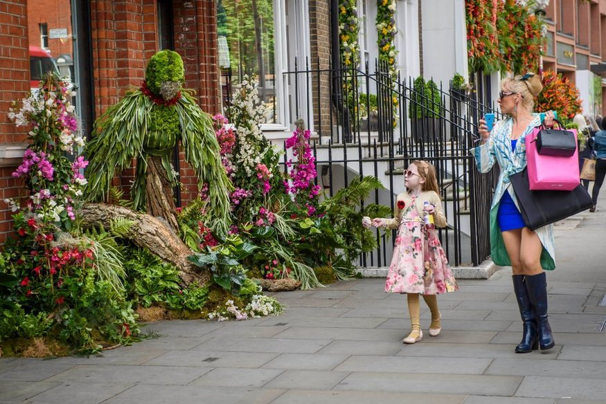Amazing Pictures Of Chelsea In Bloom