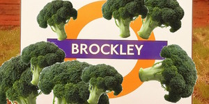 How Much Broccoli Is There In Brockley?