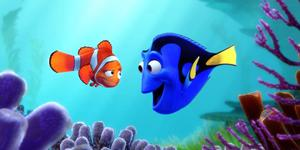 Finding Dory Star Comes To London Aquarium