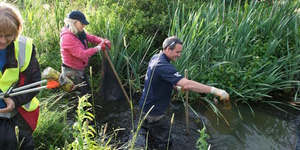 Do You Know Your Local River? Discover It At London Rivers Week