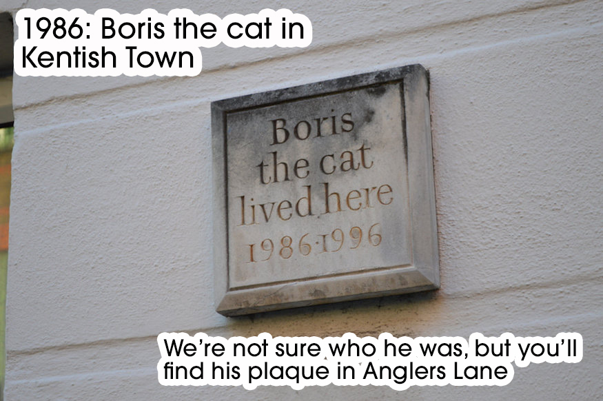 A complete history of London - in cats