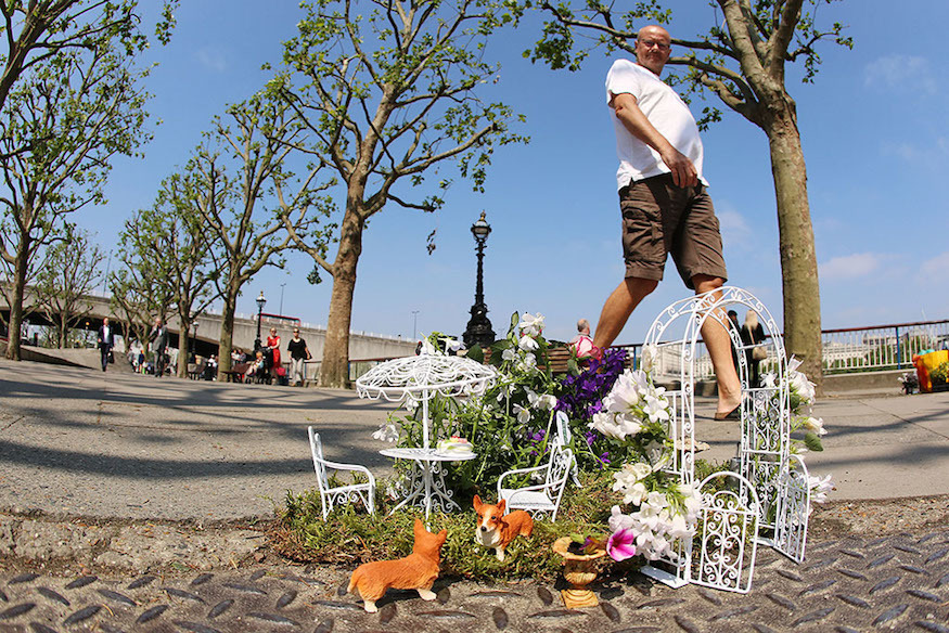 Did You Spot These Tiny Pothole Gardens?