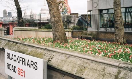 Londonist Loves ... Rennie Garden
