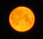 moon-view.jpg