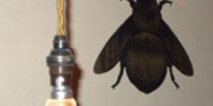 Bar Hopping - Hive