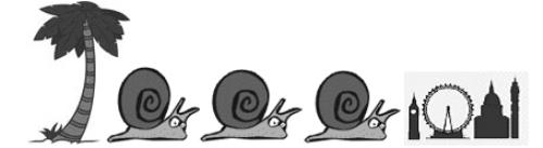 snail trail.jpg