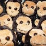 monkey-shop-1286.jpg