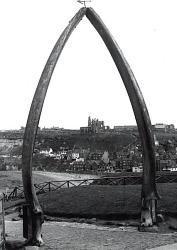 whitby_whale_bone_arch_t.jpg