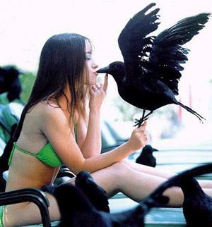 birdflu.jpg