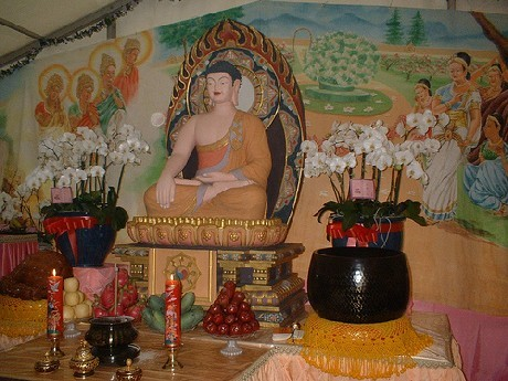 Buddha Birthday 3.jpg