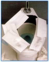 toilet-bad.jpg