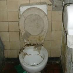 badtoilet.jpg