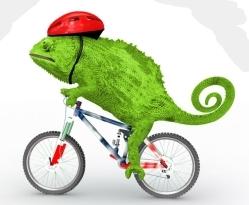 The Chameleon Finally Turns Green