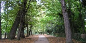 Londonist Gets Off Its Arse: Holland Park
