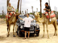 Taxi! Follow That Camel