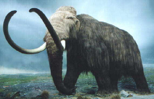 Woolly Mammoth returns to Trafalgar Square