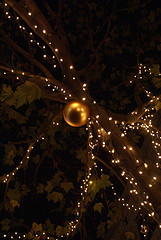 christmasy200612.jpg
