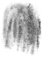 Home For The Holidays - If You Get Fingerprinted