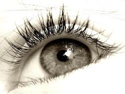 1304big_eye.jpg