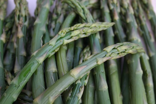 asparagus500.jpg