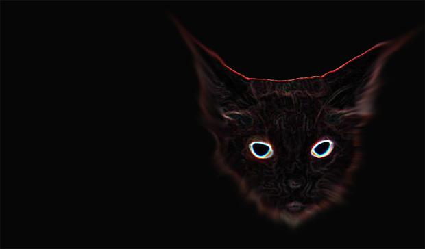 SpookyCat.jpg