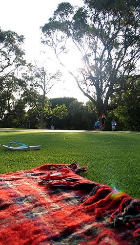 picnic180707.jpg
