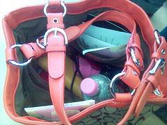 Handbag Reveals Actual Treasure