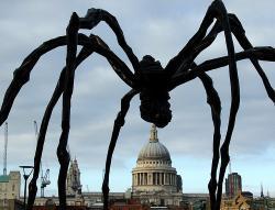 Spidermum Returns