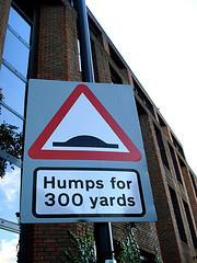 humps_251107.jpg