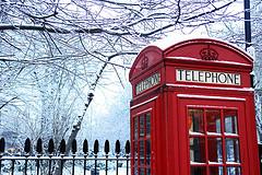 snow_161207.jpg