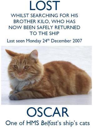 Battleship Loses Oscar