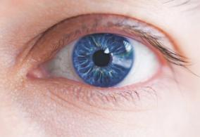 Bionic Eye Could Help Cure Blindness