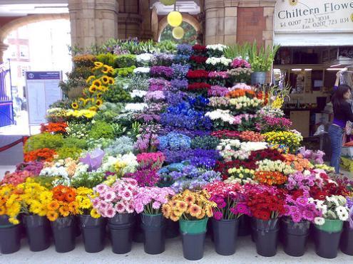 Florist_Marylebone.jpg