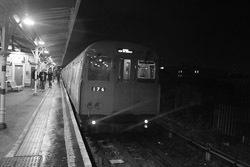 ELL_train.jpg