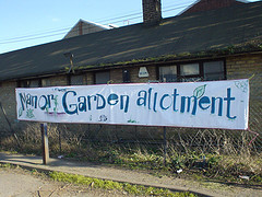 Muddy Manor Garden Allotmenteers: You Can't Keep Good Gardeners Down