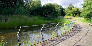 Nature-ist: Gillespie Park Local Nature Reserve