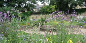 Nature-ist: King Henry's Walk Garden